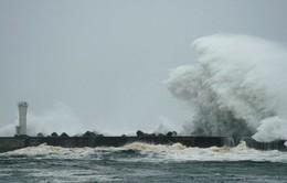 Nhật Bản cảnh báo cao nhất trước bão Hagibis