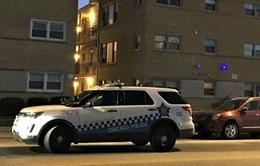 Xả súng ở Chicago (Mỹ) khiến 5 người thương vong