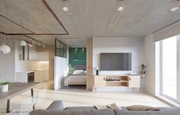 Căn hộ 25m2 có thiết kế nội thất hợp lý