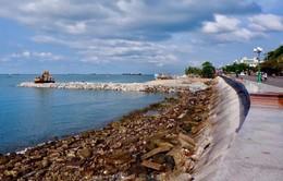 Rà soát dự án lấn biển ở Bà Rịa - Vũng Tàu
