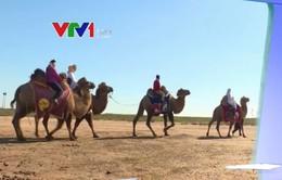 Cuộc sống hòa cùng thiên nhiên trên thảo nguyên Kalmykia