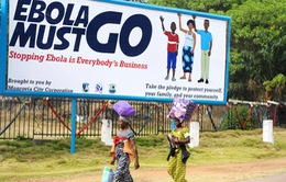 Biến đổi khí hậu làm tăng nguy cơ bùng phát Ebola