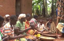 Chế độ ăn uống lành mạnh vì một thế giới không còn nạn đói