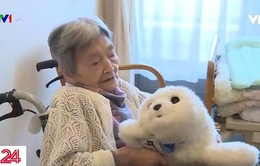Hệ thống an sinh phục vụ dân số già hóa tại Nhật Bản