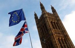 Người dân Anh chán nản khi nhắc về Brexit