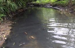 Tạm giữ 2 đối tượng đổ dầu thải ra nguồn nước sông Đà