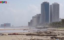 Rác thải tràn ngập bãi biển Đà Nẵng