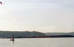 Chìm tàu 8.000 tấn trên sông Lòng Tàu, TP.HCM