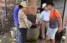 Bà Rịa - Vũng Tàu: Hơn 11.600 ca mắc sốt xuất huyết, 5 ca tử vong