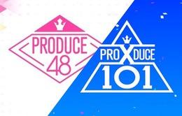 Cảnh sát điều tra nhiều công ty liên quan gian lận phiếu bầu trong Produce 48