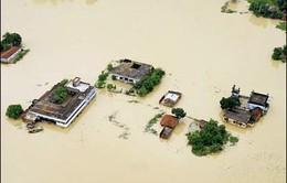 Ứng phó biến đổi khí hậu: Tính lại giải pháp