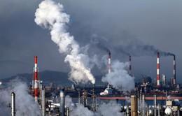 Ô nhiễm không khí ảnh hưởng xấu đến kết quả thi