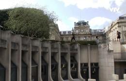 Tập parkour tại Pháp