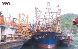 Tàu vỏ thép nằm bờ vì ngư dân không mua được bảo hiểm