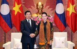 Thúc đẩy quan hệ giữa hai Quốc hội Việt Nam - Lào