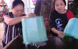 Hiệu quả từ phân loại rác thải tại nguồn ở Lào Cai
