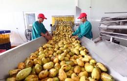 Biến động mạnh trên thị trường nông sản