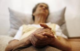 Hy vọng mới cho các bệnh nhân Alzheimer