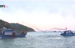 Quảng Ngãi thống nhất phương án nạo vét, chống bồi lấp luồng tàu ra vào cảng Sa Huỳnh