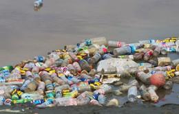 Đi tìm thủ phạm thải nhiều nhựa nhất ra môi trường