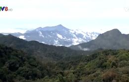Thừa Thiên - Huế chưa cho phép nghiên cứu đầu tư du lịch tâm linh trên núi Hải Vân
