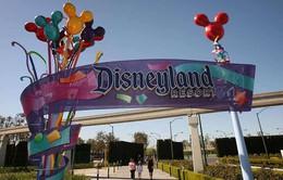 Lo ngại bệnh sởi lây lan khi tham quan công viên Disneyland
