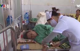 Hà Tĩnh: Số ca mắc sốt xuất huyết tăng gấp 6 lần năm 2018