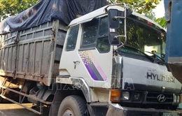 Bỏ trốn khi bị phát hiện đổ trộm chất thải, tài xế xe tải bị rắn cắn nhập viện