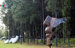 """""""Art In The Forest"""" - Điểm đến thú vị của những người yêu nghệ thuật"""