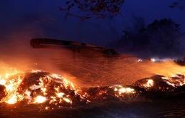 Khoảng 2 triệu người Mỹ bị ảnh hưởng bởi cháy rừng