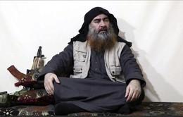 Quân đội Nga chưa có bằng chứng xác thực về việc thủ lĩnh IS bị tiêu diệt