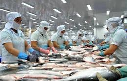 Xuất khẩu cá tra sang Nhật Bản tăng nhẹ