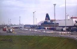 Lái xe ở cảng Zeebrugge khai container chứa bánh bích quy