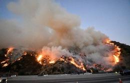 Mỹ: Cháy rừng lan rộng tại Los Angeles