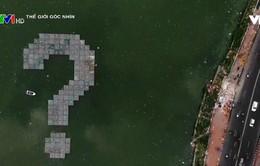 Dấu hỏi chấm được làm từ 300.000 chai nhựa