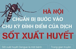 [Infographic] - Những lưu ý khi dịch sốt xuất huyết sắp vào chu kỳ đỉnh điểm tại Hà Nội