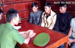 Tạm giữ 5 đối tượng đầu độc rừng thông ở Đắk Nông