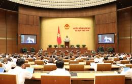 VTV truyền hình trực tiếp các phiên thảo luận của Quốc hội về kinh tế - xã hội, ngân sách nhà nước từ ngày 30/10 - 1/11