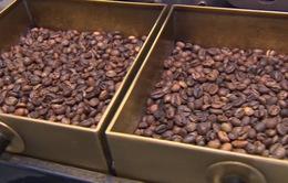 Hà Nội lọt top những điểm đến có hương vị cà phê ngon nhất