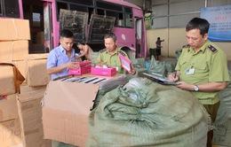 Lạng Sơn: Thu giữ hàng nghìn gói dầu gội đầu nhập lậu