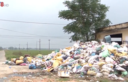 Quảng Nam: Hơn 17 ngàn tấn rác thải tồn đọng chưa được xử lý