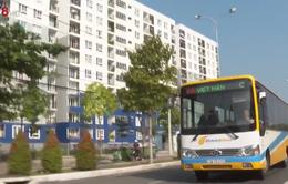 Đà Nẵng khai trương 3 tuyến xe buýt trợ giá mới