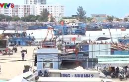 Đà Nẵng nâng cấp cảng cá Thọ Quang