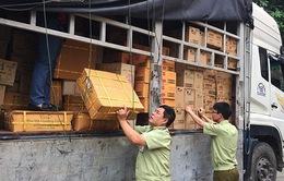 Hà Tĩnh tiến hành tiêu hủy hơn 6.000 sản phẩm không rõ nguồn gốc