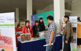 Techfest vùng Tây Nguyên và duyên hải Nam Trung Bộ: Tạo sự lan tỏa trong cộng đồng khởi nghiệp sáng tạo
