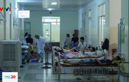 Báo động ký sinh trùng sốt rét kháng thuốc lưu hành tại Việt Nam