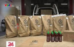 Australia bắt 400kg ma túy đá giấu trong chai tương ớt