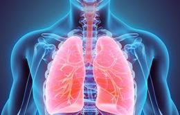 Tìm thấy chất béo trong phổi của người thừa cân