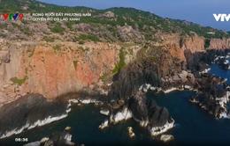 Đảo Cù Lao Xanh - Vẻ đẹp hoang sơ của Bình Định