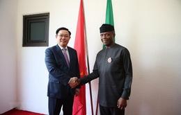 Tăng cường hợp tác giữa Việt Nam và Nigeria